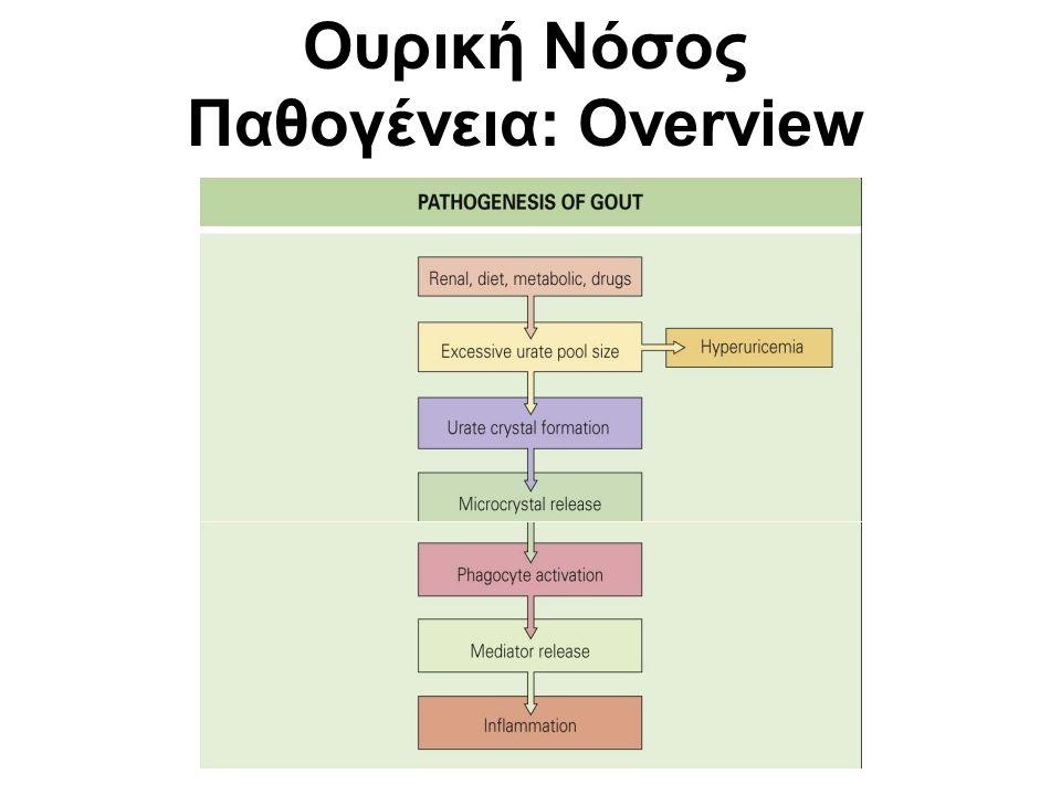 Ουρική Νόσος Παθογένεια: Overview