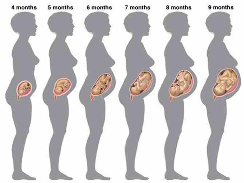 ΤΙ ΡΟΥΧΑ ΦΟΡΑΕΙ ΜΙΑ ΕΓΚΥΜΟΝΟΥΣΑ  Στην εγκυμοσύνη ανάλογα βέβαια και την εποχή του χρόνου θα πρέπει οι γυναίκες να φορούν όσο το δυνατόν πιο ελαφριά ρούχα.