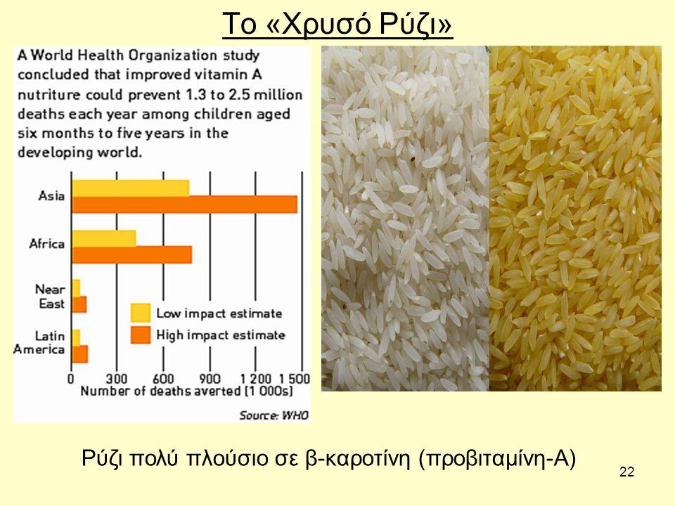 22 Το «Χρυσό Ρύζι» Ρύζι πολύ πλούσιο σε β-καροτίνη (προβιταμίνη-Α)