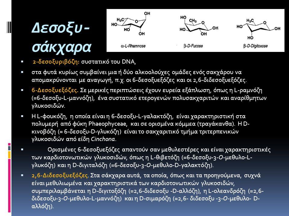 Δεσοξυ- σάκχαρα  2-δεσοξυριβόζη: συστατικό του DNA,  στα φυτά κυρίως συμβαίνει μια ή δύο αλκοολούχες ομάδες ενός σακχάρου να απομακρύνονται με αναγω