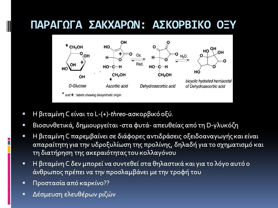ΠΑΡΑΓΩΓΑ ΣΑΚΧΑΡΩΝ: ΑΣΚΟΡΒΙΚΟ ΟΞΥ  Η βιταμίνη C είναι το L-(+)-threo-ασκορβικό οξύ.  Βιοσυνθετικά, δημιουργείται -στα φυτά- απευθείας από τη D-γλυκόζ