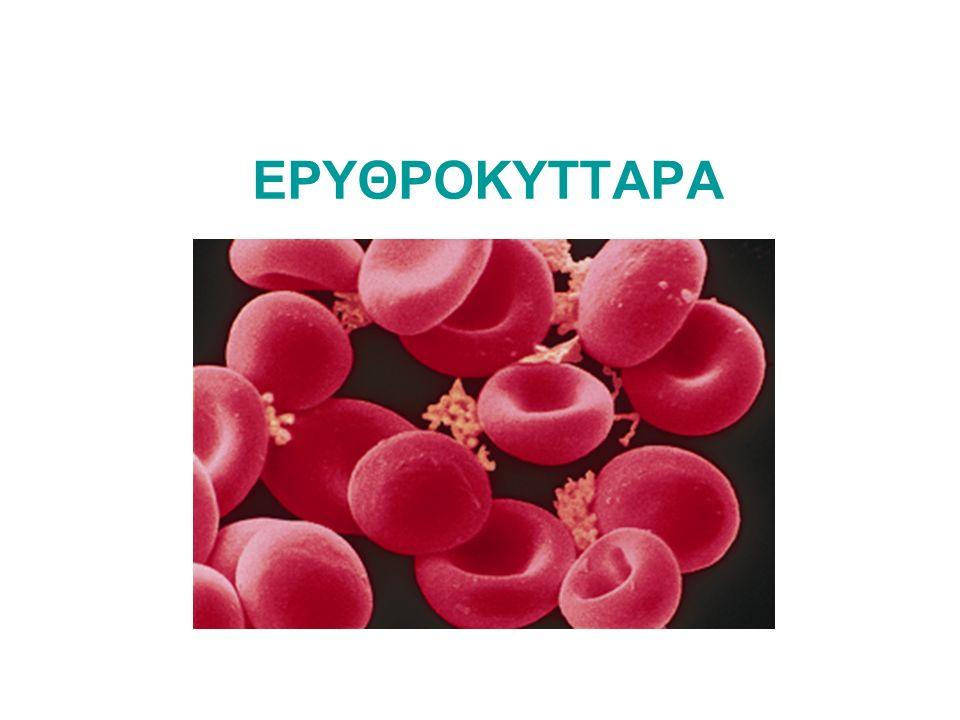 ΕΡΥΘΡΟΚΥΤΤΑΡΑ