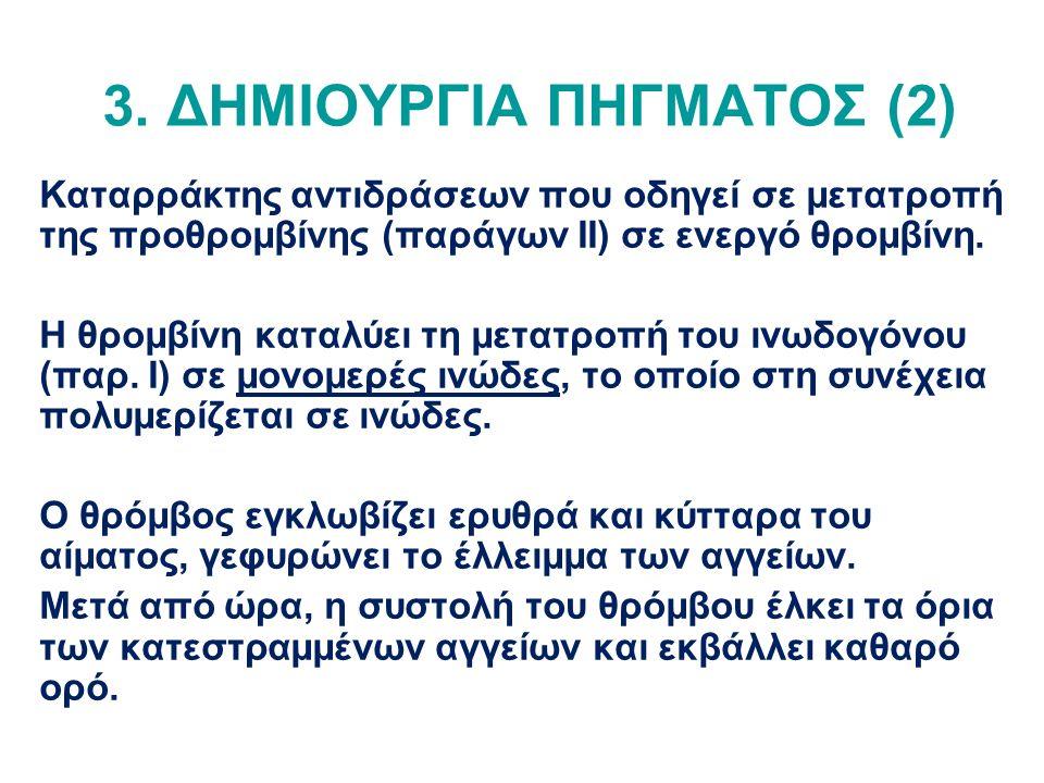 3. ΔΗΜΙΟΥΡΓΙΑ ΠΗΓΜΑΤΟΣ (2) Καταρράκτης αντιδράσεων που οδηγεί σε μετατροπή της προθρομβίνης (παράγων ΙΙ) σε ενεργό θρομβίνη. Η θρομβίνη καταλύει τη με