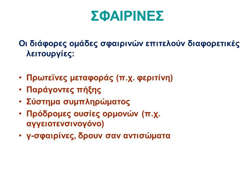 ΣΦΑΙΡΙΝΕΣ Οι διάφορες ομάδες σφαιρινών επιτελούν διαφορετικές λειτουργίες: Πρωτεϊνες μεταφοράς (π.χ.