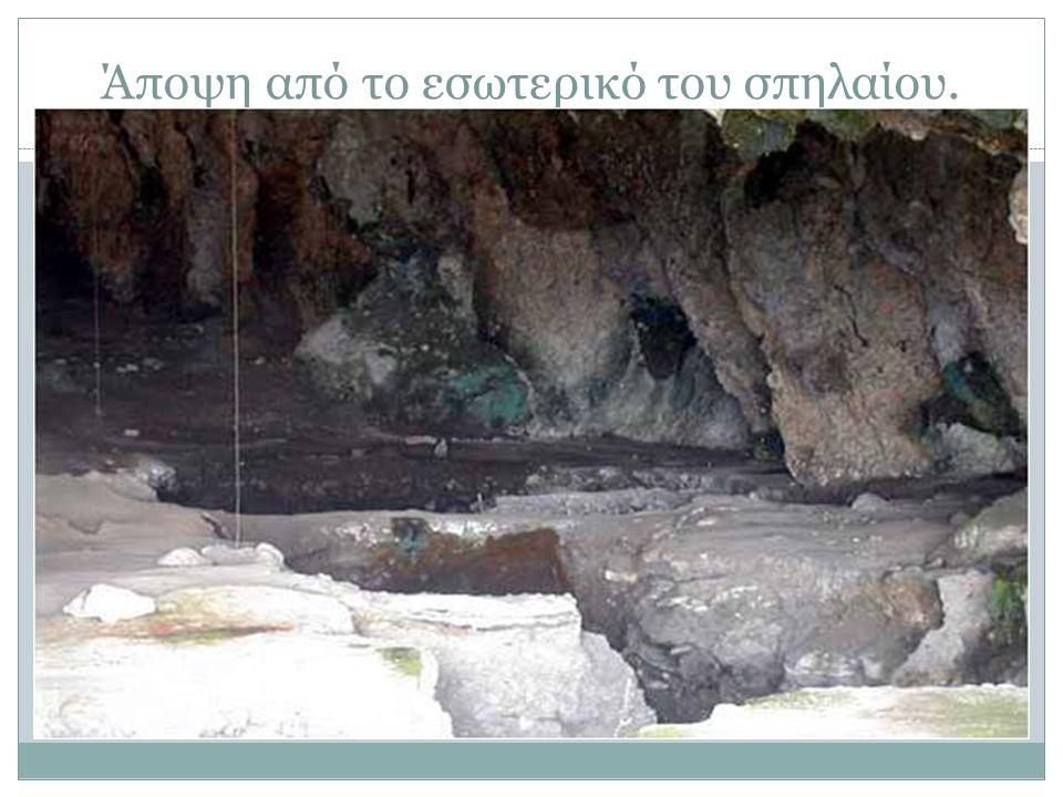 Άποψη από το εσωτερικό του σπηλαίου.