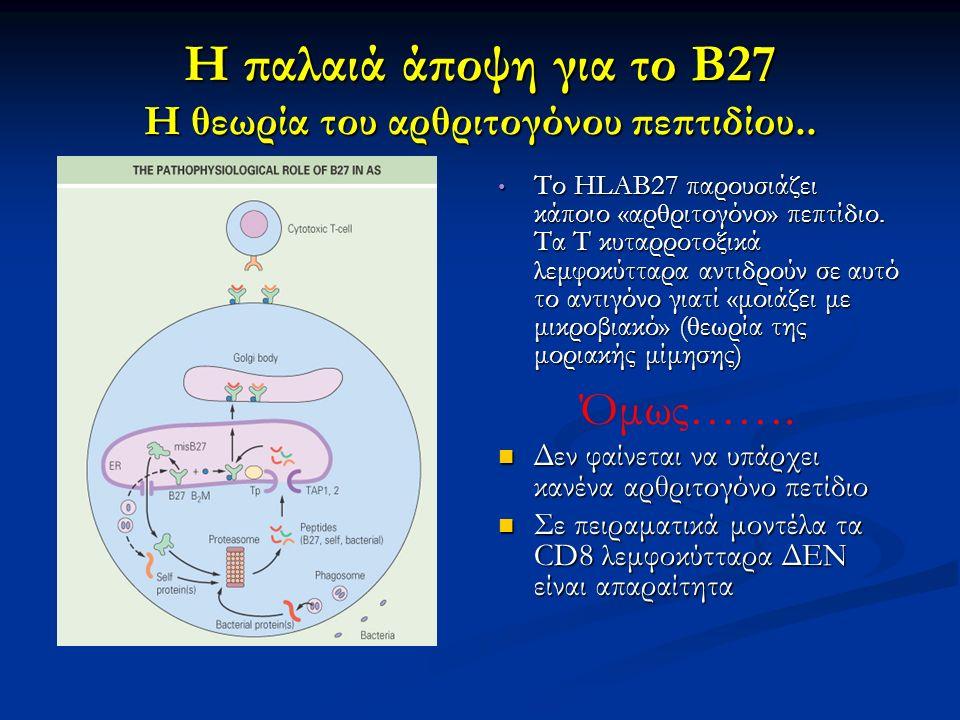 Η παλαιά άποψη για το Β27 Η θεωρία του αρθριτογόνου πεπτιδίου.. Το HLAB27 παρουσιάζει κάποιο «αρθριτογόνο» πεπτίδιο. Τα Τ κυταρροτοξικά λεμφοκύτταρα α