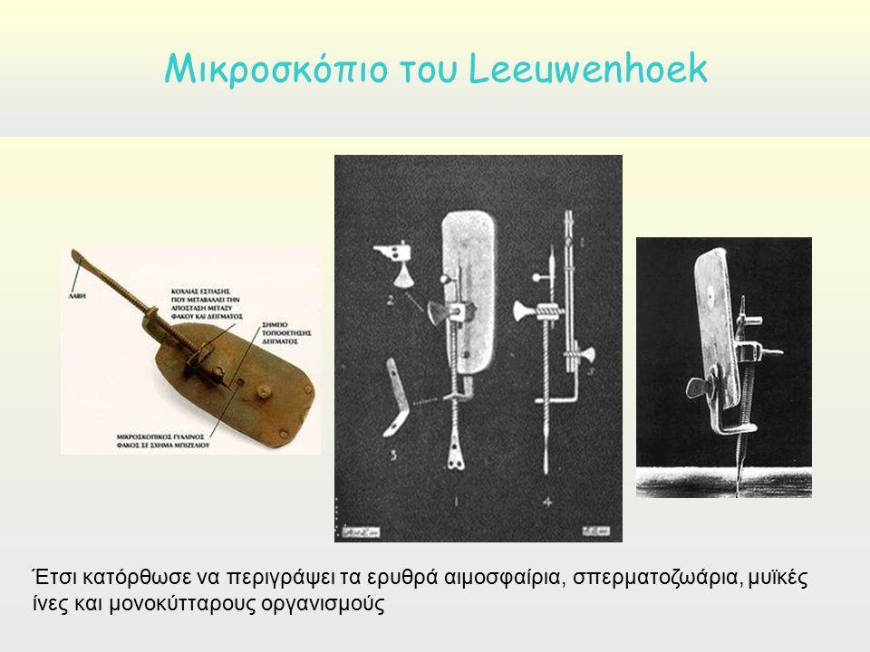 Έτσι κατόρθωσε να περιγράψει τα ερυθρά αιμοσφαίρια, σπερματοζωάρια, μυϊκές ίνες και μονοκύτταρους οργανισμούς Μικρoσκόπιο του Leeuwenhoek