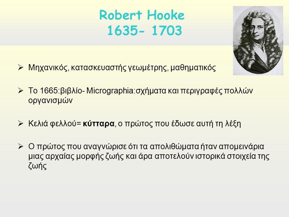  Μηχανικός, κατασκευαστής γεωμέτρης, μαθηματικός  Το 1665:βιβλίο- Micrographia:σχήματα και περιγραφές πολλών οργανισμών  Κελιά φελλού= κύτταρα, ο πρώτος που έδωσε αυτή τη λέξη  Ο πρώτος που αναγνώρισε ότι τα απολιθώματα ήταν απομεινάρια μιας αρχαίας μορφής ζωής και άρα αποτελούν ιστορικά στοιχεία της ζωής Robert Hooke 1635- 1703