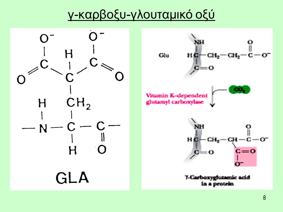 9 Πήξη (θρόμβωση) Η ικανότητα να δεσμεύουν τα ιόντα ασβεστίου (Ca 2 +) είναι απαραίτητη για την ενεργοποίηση των επτά παραγόντων πήξης, ή πρωτεϊνών, που εξαρτώνται από τη βιταμίνη Κ, στον καταρράκτη της πήξης.