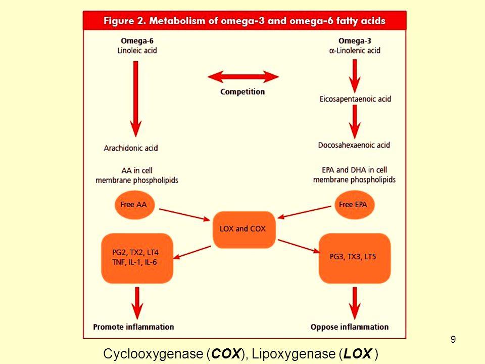 9 Cyclooxygenase (COX), Lipoxygenase (LOX )
