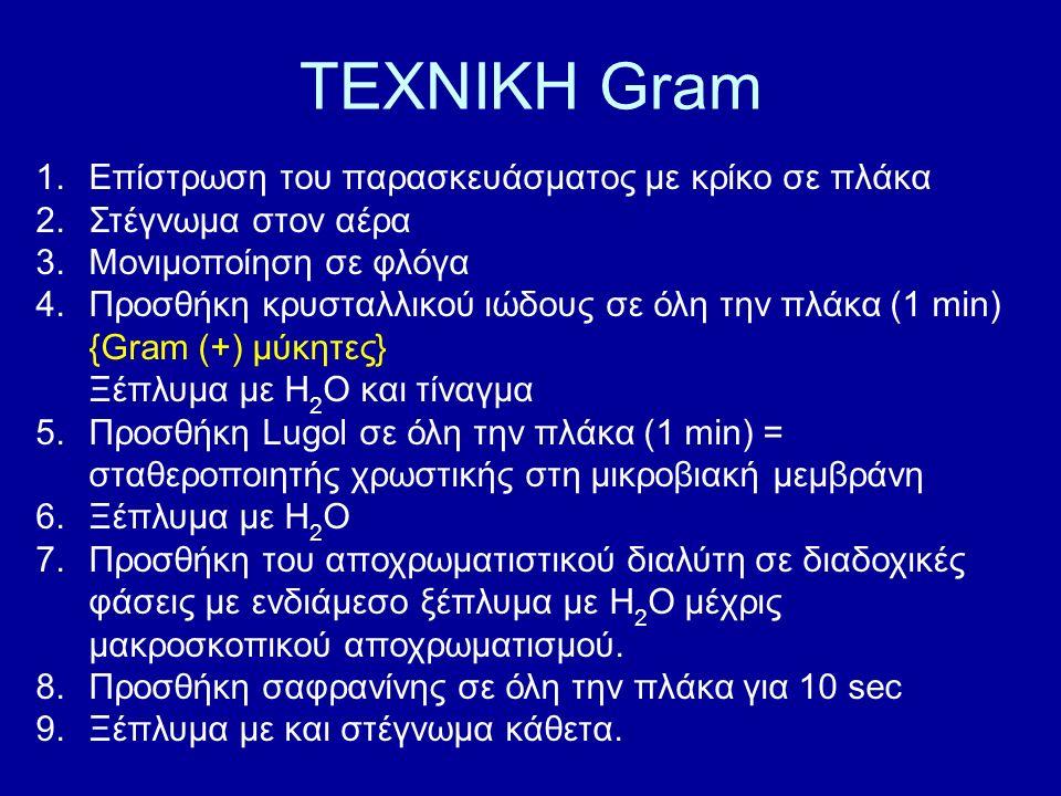 ΤΕΧΝΙΚΗ Gram 1.Επίστρωση του παρασκευάσματος με κρίκο σε πλάκα 2.Στέγνωμα στον αέρα 3.Μονιμοποίηση σε φλόγα 4.Προσθήκη κρυσταλλικού ιώδους σε όλη την πλάκα (1 min) {Gram (+) μύκητες} Ξέπλυμα με Η 2 Ο και τίναγμα 5.Προσθήκη Lugol σε όλη την πλάκα (1 min) = σταθεροποιητής χρωστικής στη μικροβιακή μεμβράνη 6.Ξέπλυμα με Η 2 Ο 7.Προσθήκη του αποχρωματιστικού διαλύτη σε διαδοχικές φάσεις με ενδιάμεσο ξέπλυμα με Η 2 Ο μέχρις μακροσκοπικού αποχρωματισμού.