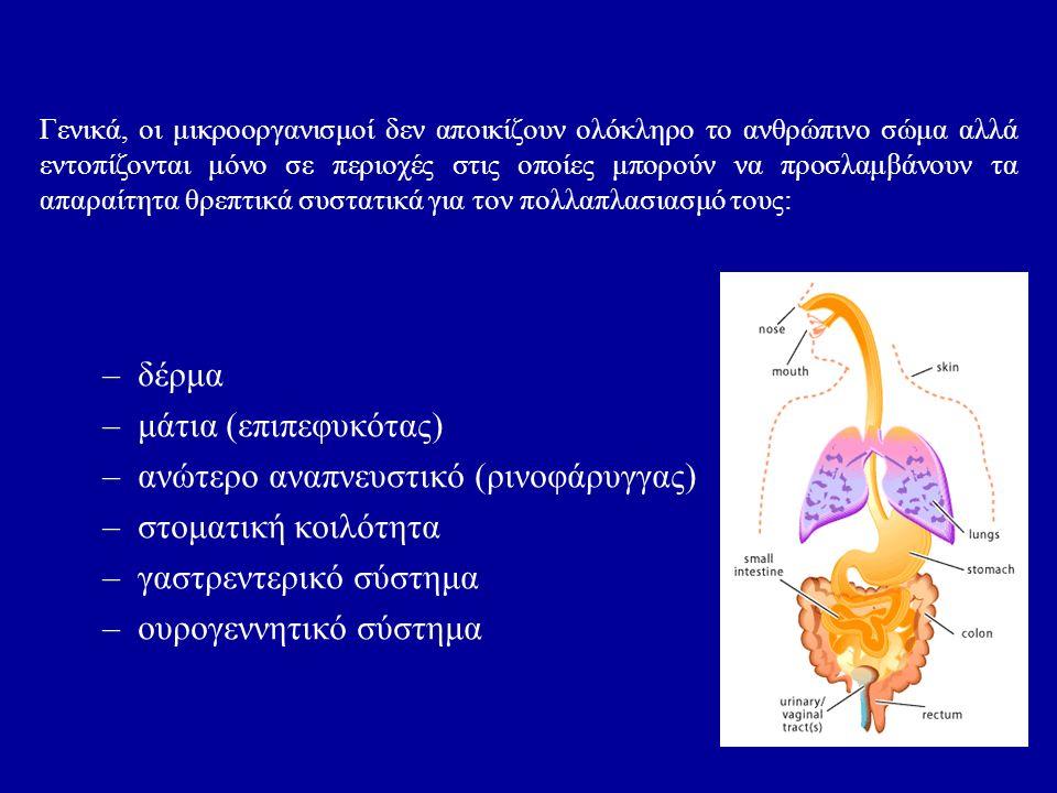 Γενικά, οι μικροοργανισμοί δεν αποικίζουν ολόκληρο το ανθρώπινο σώμα αλλά εντοπίζονται μόνο σε περιοχές στις οποίες μπορούν να προσλαμβάνουν τα απαραίτητα θρεπτικά συστατικά για τον πολλαπλασιασμό τους: –δέρμα –μάτια (επιπεφυκότας) –ανώτερο αναπνευστικό (ρινοφάρυγγας) –στοματική κοιλότητα –γαστρεντερικό σύστημα –ουρογεννητικό σύστημα