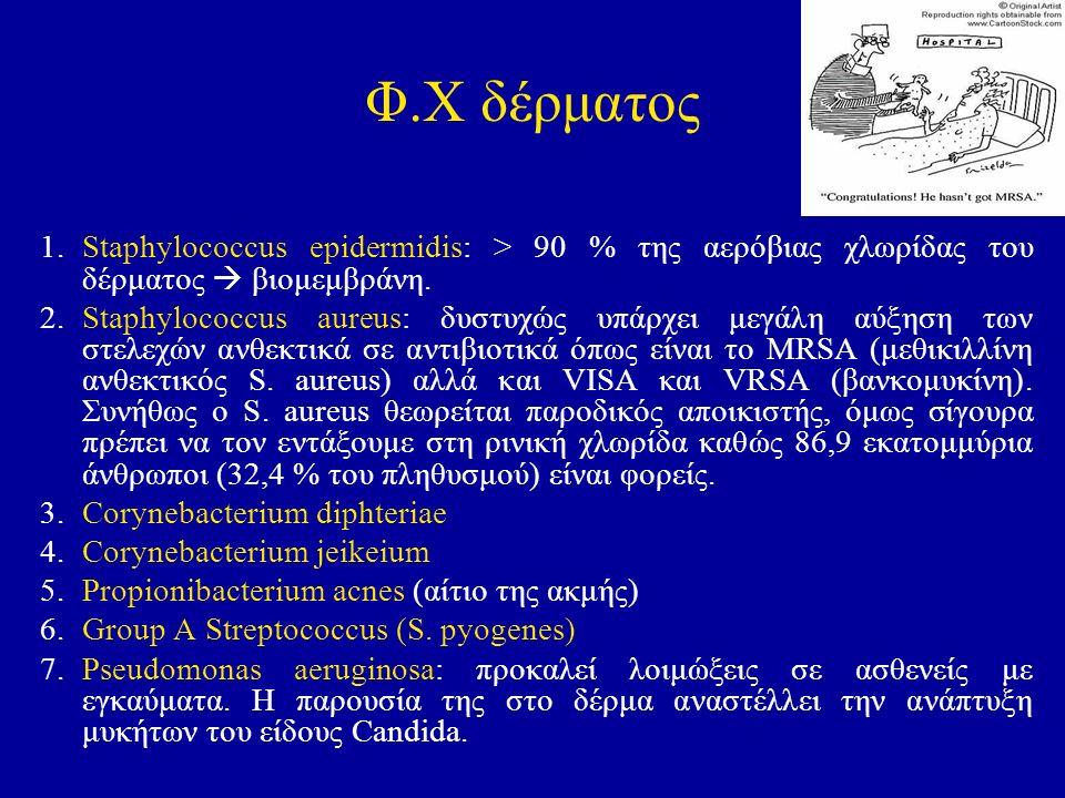 Φ.Χ δέρματος 1.Staphylococcus epidermidis: > 90 % της αερόβιας χλωρίδας του δέρματος  βιομεμβράνη. 2. Staphylococcus aureus: δυστυχώς υπάρχει μεγάλη