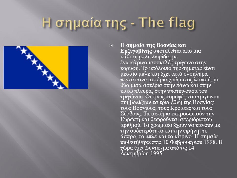  Η σημαία της Βοσνίας και Ερζεγοβίνης αποτελείται από μια κάθετη μπλε λωρίδα, με ένα κίτρινο ισοσκελές τρίγωνο στην κορυφή.