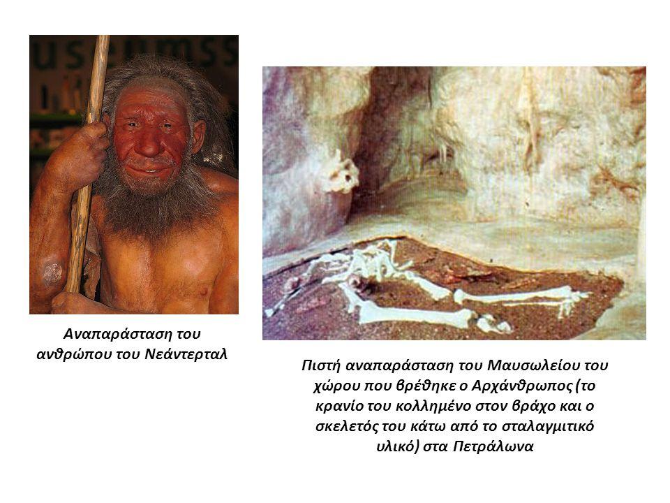 Αναπαράσταση του ανθρώπου του Νεάντερταλ Πιστή αναπαράσταση του Μαυσωλείου του χώρου που βρέθηκε ο Αρχάνθρωπος (το κρανίο του κολλημένο στον βράχο και