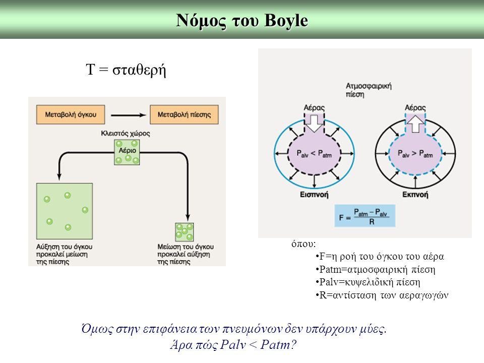Νόμος του Boyle Τ = σταθερή όπου: F=η ροή του όγκου του αέρα Patm=ατμοσφαιρική πίεση Palv=κυψελιδική πίεση R=αντίσταση των αεραγωγών Όμως στην επιφάνε