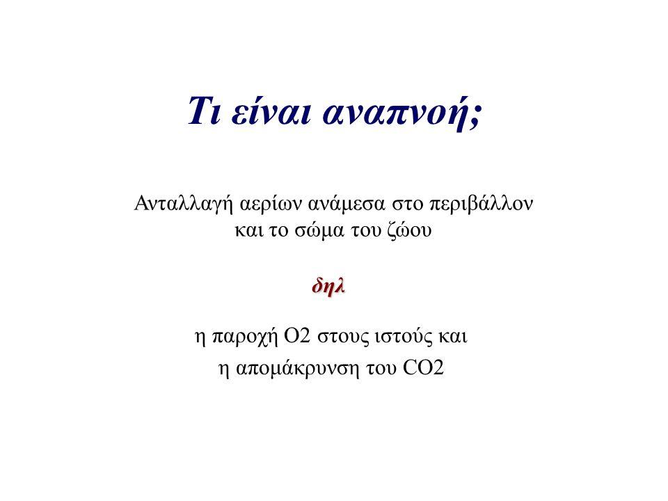 Τι είναι αναπνοή; η παροχή Ο2 στους ιστούς και η απομάκρυνση του CO2 Ανταλλαγή αερίων ανάμεσα στο περιβάλλον και το σώμα του ζώου δηλ