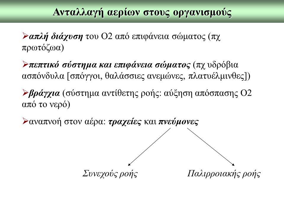 Ανταλλαγή αερίων στους οργανισμούς  απλή διάχυση του Ο2 από επιφάνεια σώματος (πχ πρωτόζωα)  πεπτικό σύστημα και επιφάνεια σώματος (πχ υδρόβια ασπόνδυλα [σπόγγοι, θαλάσσιες ανεμώνες, πλατυέλμινθες])  βράγχια (σύστημα αντίθετης ροής: αύξηση απόσπασης Ο2 από το νερό)  αναπνοή στον αέρα: τραχείες και πνεύμονες Συνεχούς ροήςΠαλιρροιακής ροής