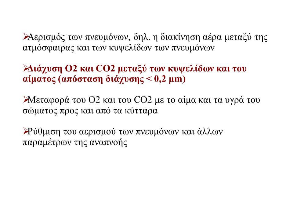  Αερισμός των πνευμόνων, δηλ. η διακίνηση αέρα μεταξύ της ατμόσφαιρας και των κυψελίδων των πνευμόνων  Διάχυση Ο2 και CO2 μεταξύ των κυψελίδων και τ
