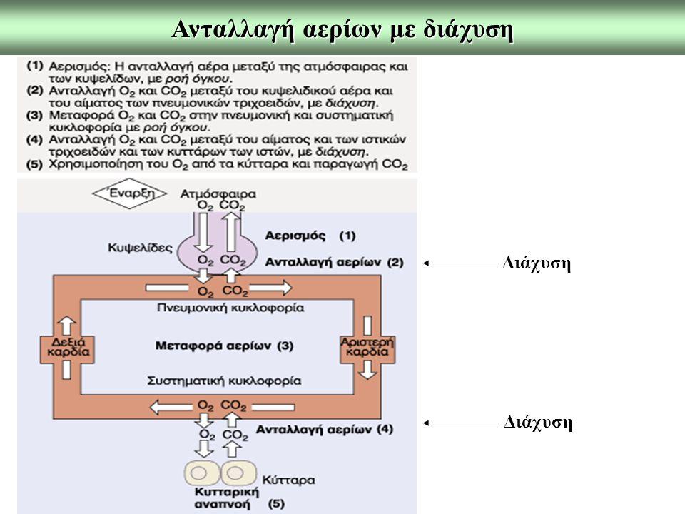 Ανταλλαγή αερίων με διάχυση Διάχυση