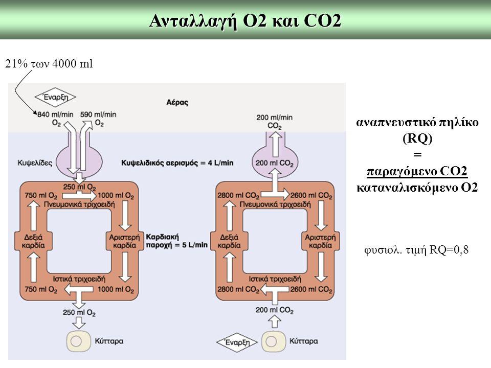 Ανταλλαγή Ο2 και CO2 αναπνευστικό πηλίκο (RQ) = παραγόμενο CO2 καταναλισκόμενο Ο2 φυσιολ. τιμή RQ=0,8 21% των 4000 ml