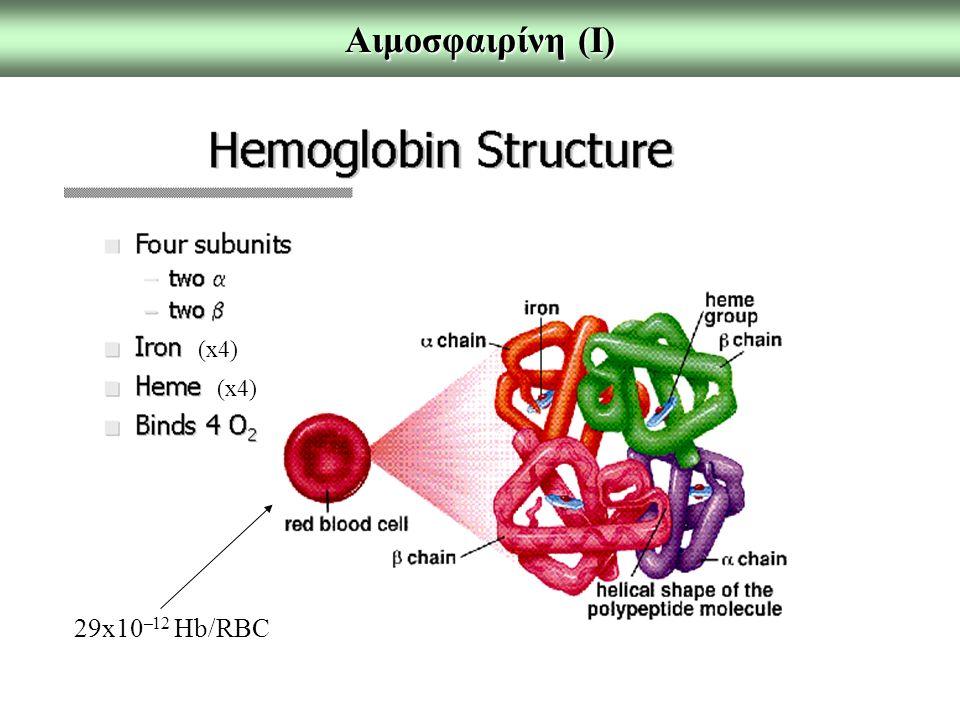 Αιμοσφαιρίνη (Ι) 29x10 –12 Hb/RBC (x4)