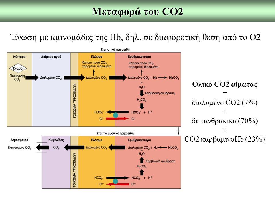 Μεταφορά του CO2 Ένωση με αμινομάδες της Hb, δηλ. σε διαφορετική θέση από το O2 Ολικό CO2 αίματος = διαλυμένο CO2 (7%) + διττανθρακικά (70%) + CO2 καρ