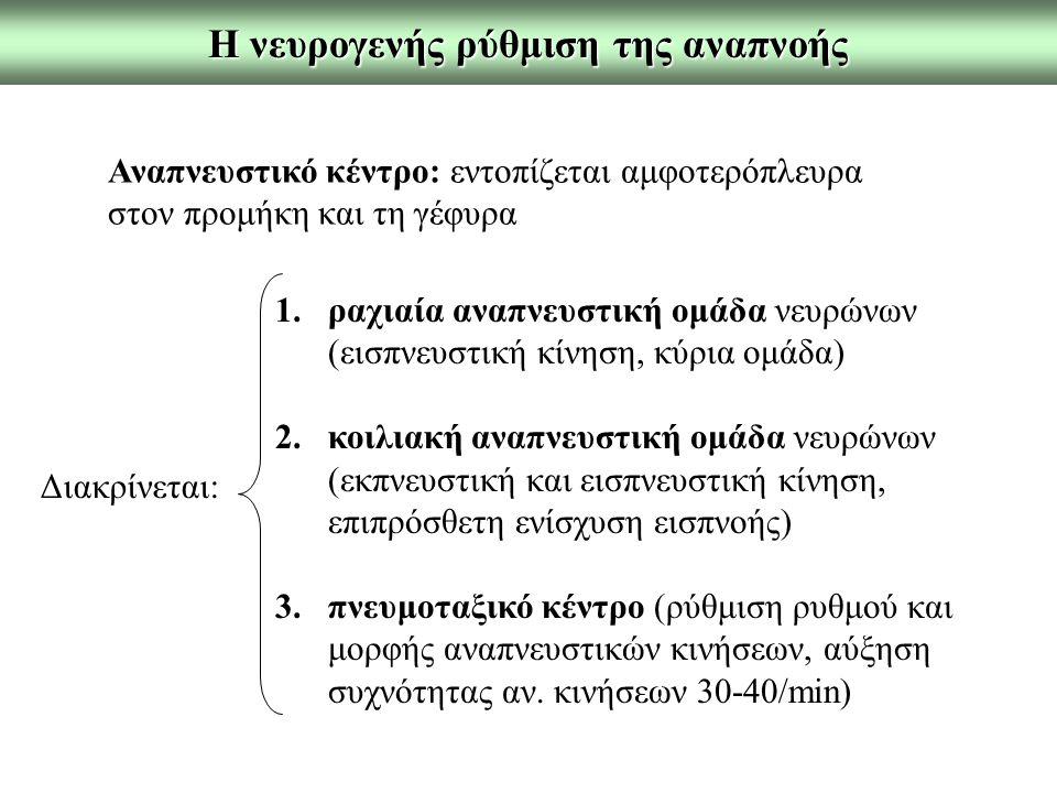 Η νευρογενής ρύθμιση της αναπνοής Αναπνευστικό κέντρο: εντοπίζεται αμφοτερόπλευρα στον προμήκη και τη γέφυρα Διακρίνεται: 1.ραχιαία αναπνευστική ομάδα