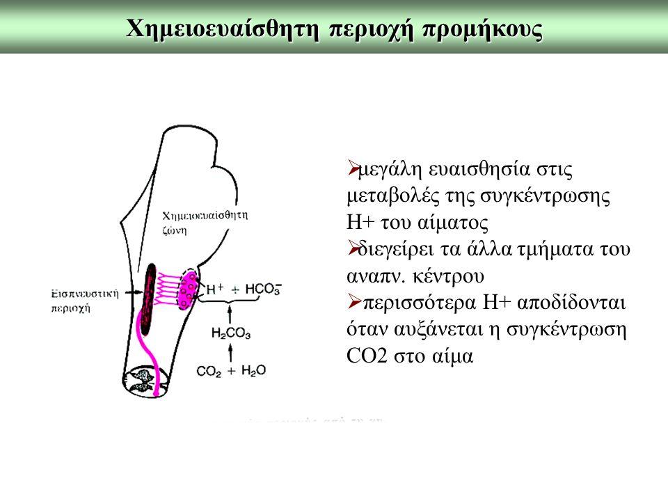 Χημειοευαίσθητη περιοχή προμήκους  μεγάλη ευαισθησία στις μεταβολές της συγκέντρωσης Η+ του αίματος  διεγείρει τα άλλα τμήματα του αναπν. κέντρου 