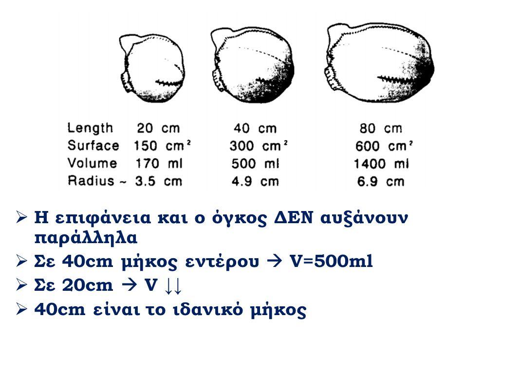  Η επιφάνεια και ο όγκος ΔΕΝ αυξάνουν παράλληλα  Σε 40cm μήκος εντέρου  V=500ml  Σε 20cm  V ↓↓  40cm είναι το ιδανικό μήκος