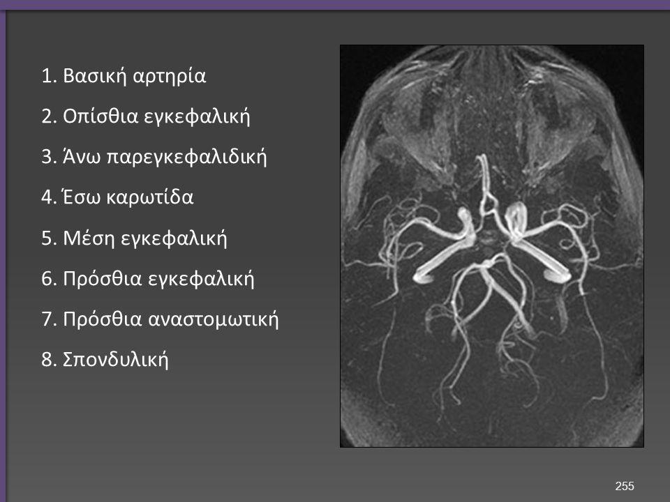 1. Βασική αρτηρία 2. Οπίσθια εγκεφαλική 3. Άνω παρεγκεφαλιδική 4.