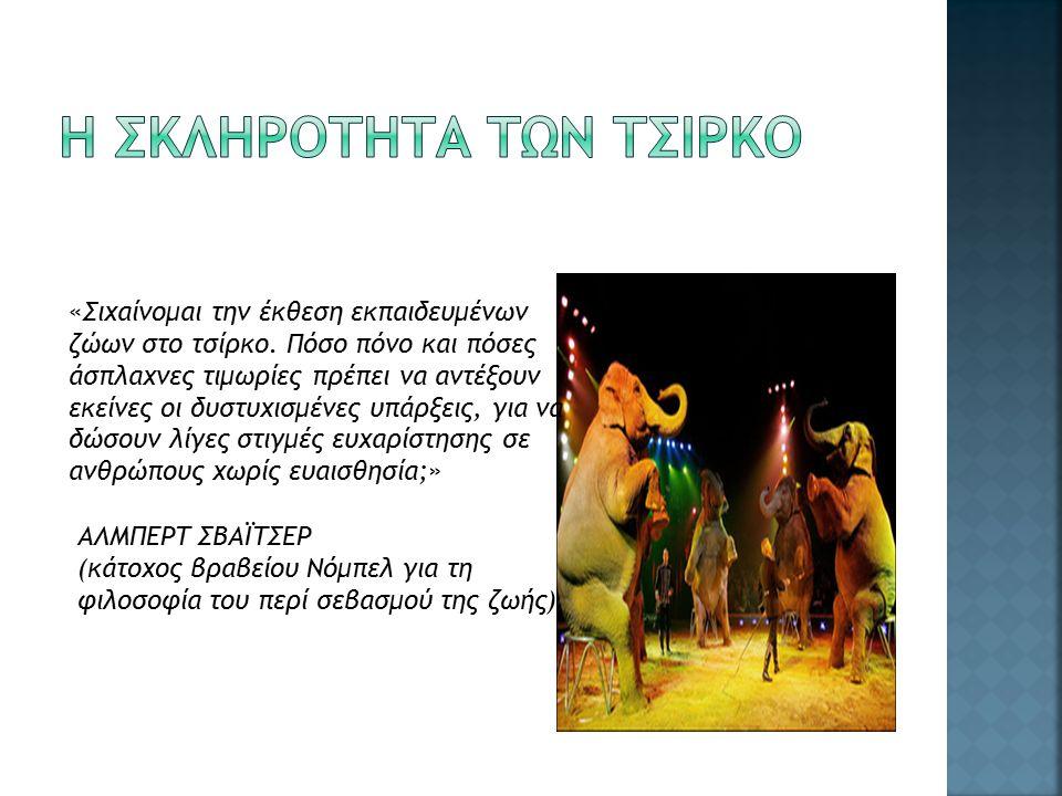 «Σιχαίνομαι την έκθεση εκπαιδευμένων ζώων στο τσίρκο.