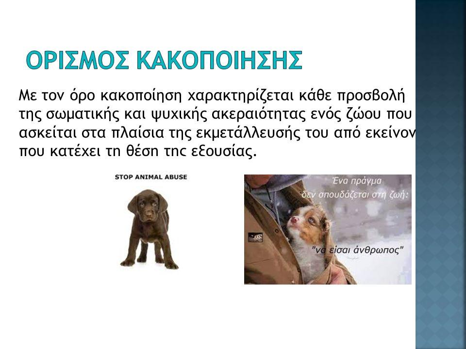 Με τον όρο κακοποίηση χαρακτηρίζεται κάθε προσβολή της σωματικής και ψυχικής ακεραιότητας ενός ζώου που ασκείται στα πλαίσια της εκμετάλλευσής του από εκείνον που κατέχει τη θέση της εξουσίας.