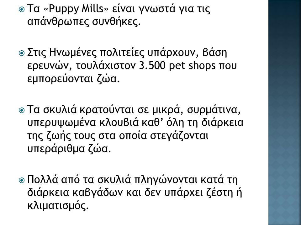  Τα «Puppy Mills» είναι γνωστά για τις απάνθρωπες συνθήκες.  Στις Ηνωμένες πολιτείες υπάρχουν, βάση ερευνών, τουλάχιστον 3.500 pet shops που εμπορεύ