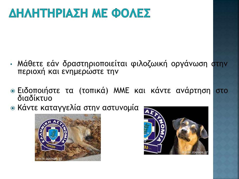 Μάθετε εάν δραστηριοποιείται φιλοζωική οργάνωση στην περιοχή και ενημερώστε την  Ειδοποιήστε τα (τοπικά) ΜΜΕ και κάντε ανάρτηση στο διαδίκτυο  Κάντε καταγγελία στην αστυνομία