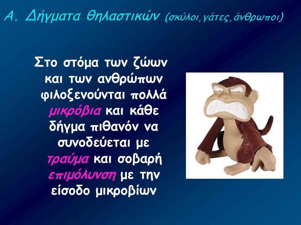 Στο στόμα των ζώων και των ανθρώπων φιλοξενούνται πολλά μικρόβια και κάθε δήγμα πιθανόν να συνοδεύεται με τραύμα και σοβαρή επιμόλυνση με την είσοδο μ