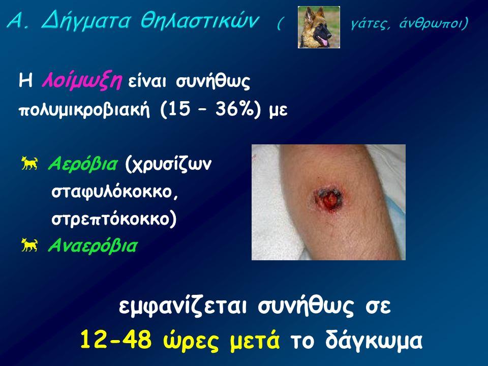 Η λοίμωξη είναι συνήθως πολυμικροβιακή (15 – 36%) με  Αερόβια (χρυσίζων σταφυλόκοκκο, στρεπτόκοκκο)  Αναερόβια εμφανίζεται συνήθως σε 12-48 ώρες μετ