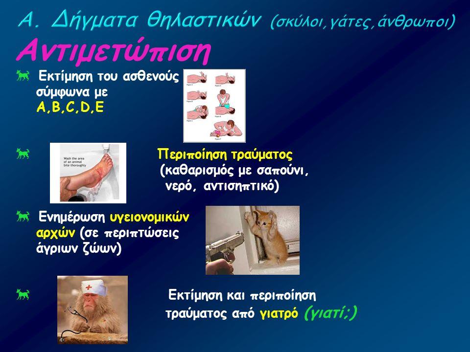 Αντιμετώπιση  Εκτίμηση του ασθενούς σύμφωνα με A,B,C,D,E  Περιποίηση τραύματος (καθαρισμός με σαπούνι, νερό, αντισηπτικό)  Ενημέρωση υγειονομικών α