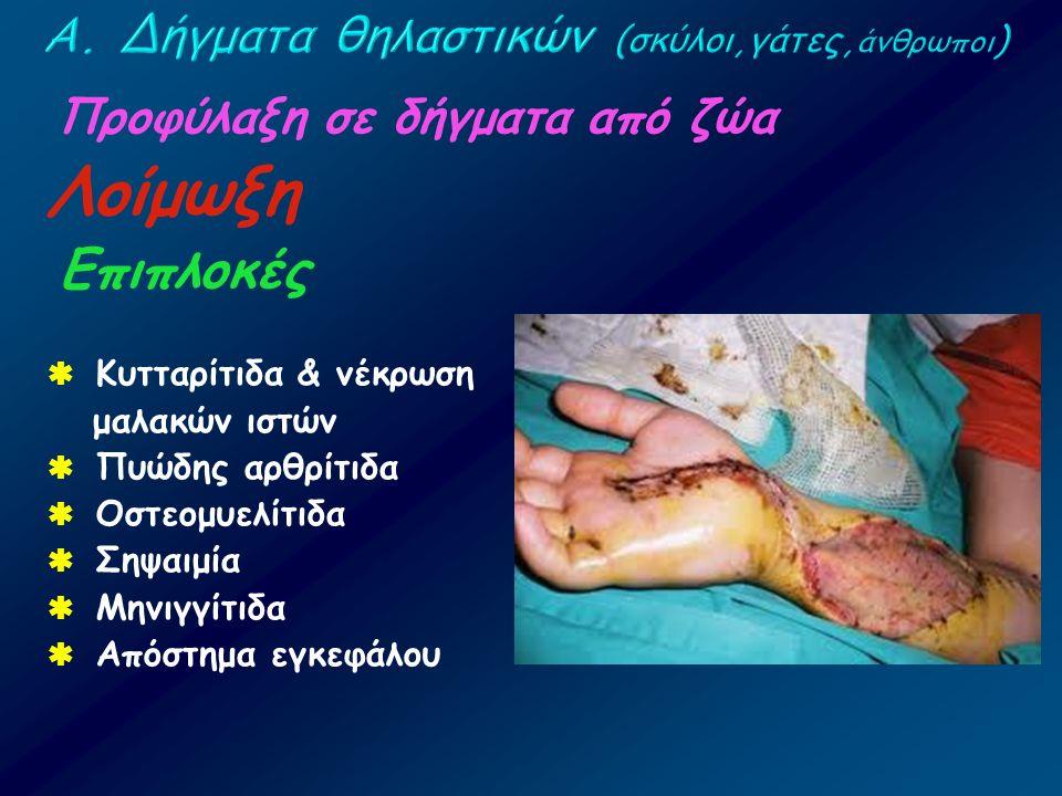 Προφύλαξη σε δήγματα από ζώα Λοίμωξη Επιπλοκές  Κυτταρίτιδα & νέκρωση μαλακών ιστών  Πυώδης αρθρίτιδα  Οστεομυελίτιδα  Σηψαιμία  Μηνιγγίτιδα  Απ