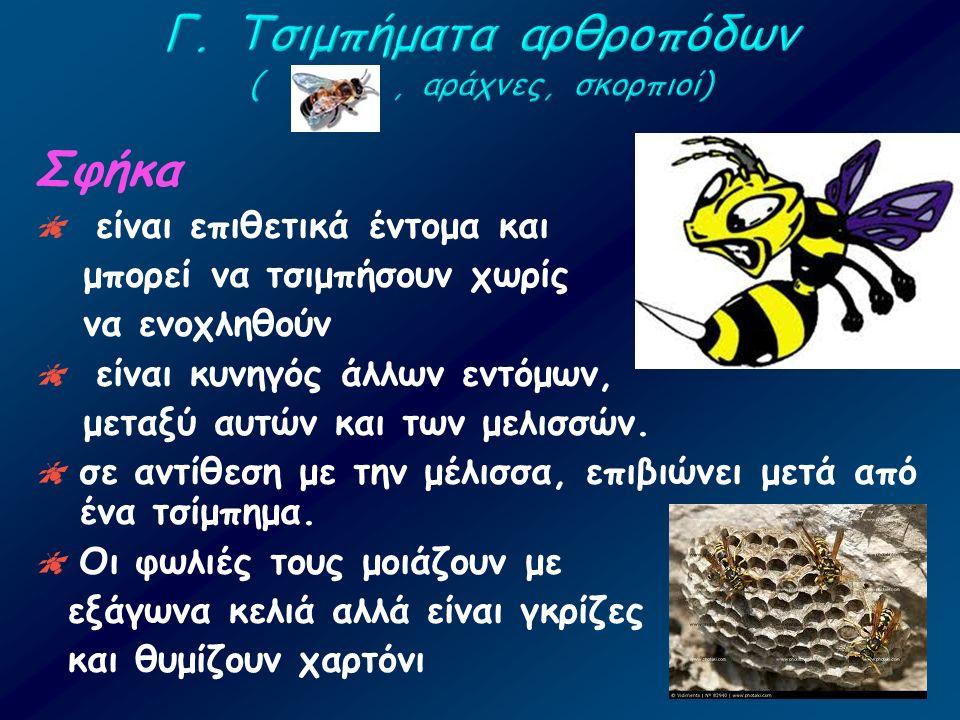 Σφήκα  είναι επιθετικά έντομα και μπορεί να τσιμπήσουν χωρίς να ενοχληθούν  είναι κυνηγός άλλων εντόμων, μεταξύ αυτών και των μελισσών.  σε αντίθεσ