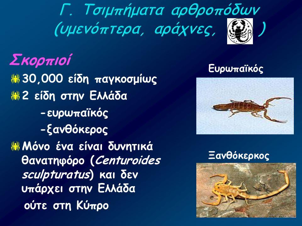 Σκορπιοί  30,000 είδη παγκοσμίως  2 είδη στην Ελλάδα -ευρωπαϊκός -ξανθόκερος  Μόνο ένα είναι δυνητικά θανατηφόρο (Centuroides sculpturatus) και δεν