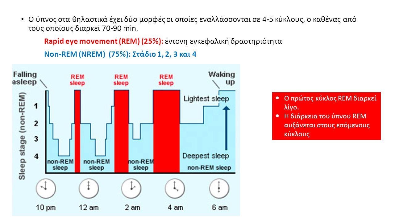 Ο ύπνος στα θηλαστικά έχει δύο μορφές οι οποίες εναλλάσσονται σε 4-5 κύκλους, ο καθένας από τους οποίους διαρκεί 70-90 min.