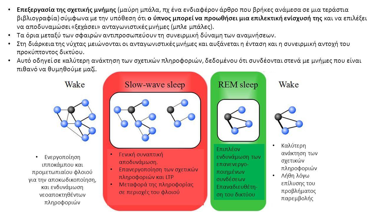 Επεξεργασία της σχετικής μνήμης (μαύρη μπάλα, πχ ένα ενδιαφέρον άρθρο που βρήκες ανάμεσα σε μια τεράστια βιβλιογραφία) σύμφωνα με την υπόθεση ότι ο ύπνος μπορεί να προωθήσει μια επιλεκτική ενίσχυσή της και να επιλέξει να αποδυναμώσει «ξεχάσει» ανταγωνιστικές μνήμες (μπλε μπάλες).