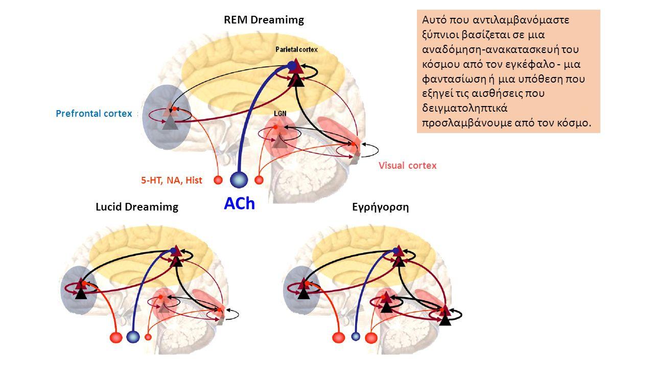 Αυτό που αντιλαμβανόμαστε ξύπνιοι βασίζεται σε μια αναδόμηση-ανακατασκευή του κόσμου από τον εγκέφαλο - μια φαντασίωση ή μια υπόθεση που εξηγεί τις αισθήσεις που δειγματοληπτικά προσλαμβάνουμε από τον κόσμο.