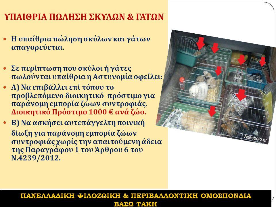 ΥΠΑΙΘΡΙΑ ΠΩΛΗΣΗ ΣΚΥΛΩΝ & ΓΑΤΩΝ Η υπαίθρια πώληση σκύλων και γάτων απαγορεύεται.