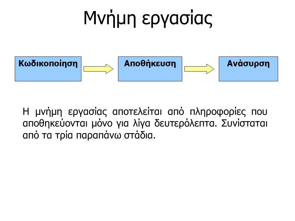 ΚωδικοποίησηΑποθήκευσηΑνάσυρση Η μνήμη εργασίας αποτελείται από πληροφορίες που αποθηκεύονται μόνο για λίγα δευτερόλεπτα. Συνίσταται από τα τρία παραπ