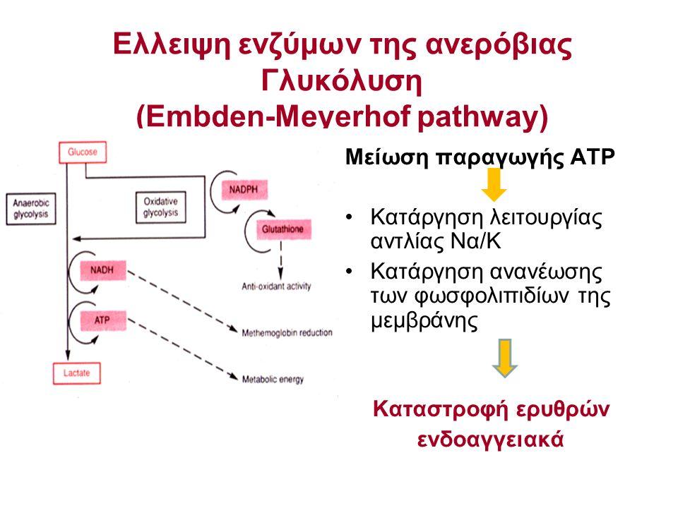Ελλειψη ενζύμων της ανερόβιας Γλυκόλυση (Embden-Meyerhof pathway) Μείωση παραγωγής ATP Κατάργηση λειτουργίας αντλίας Να/Κ Κατάργηση ανανέωσης των φωσφ