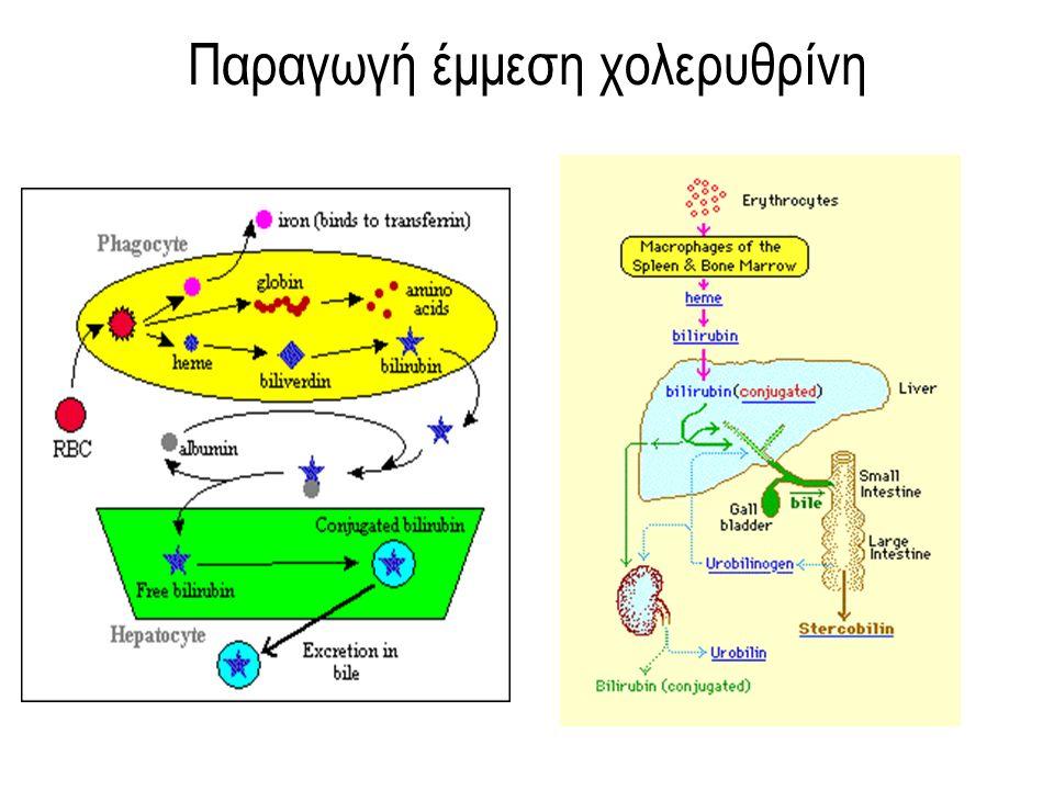 Παθοφυσιολογία αιμόλυσης σε ανεπάρκεια G-6PD ευαισθησία ερυθρών σε οξειδωτικά ερεθίσματα Μέτρια έλλειψη G-6PD Χρόνια αιμόλυση κατακρήμνηση μετουσιωμένης Hb Προσκόλληση στην μεμβράνη Εξωαγγειακή αιμόλυση Μέτρια έλλειψη G-6PD+ισχυρή οξειδωτική προσβολή Βαρειά έλλειψη G-6PD Οξεία αιμόλυση Οξείδωση λιπιδίων μεμβράνης Ενδαγγειακή αιμόλυση