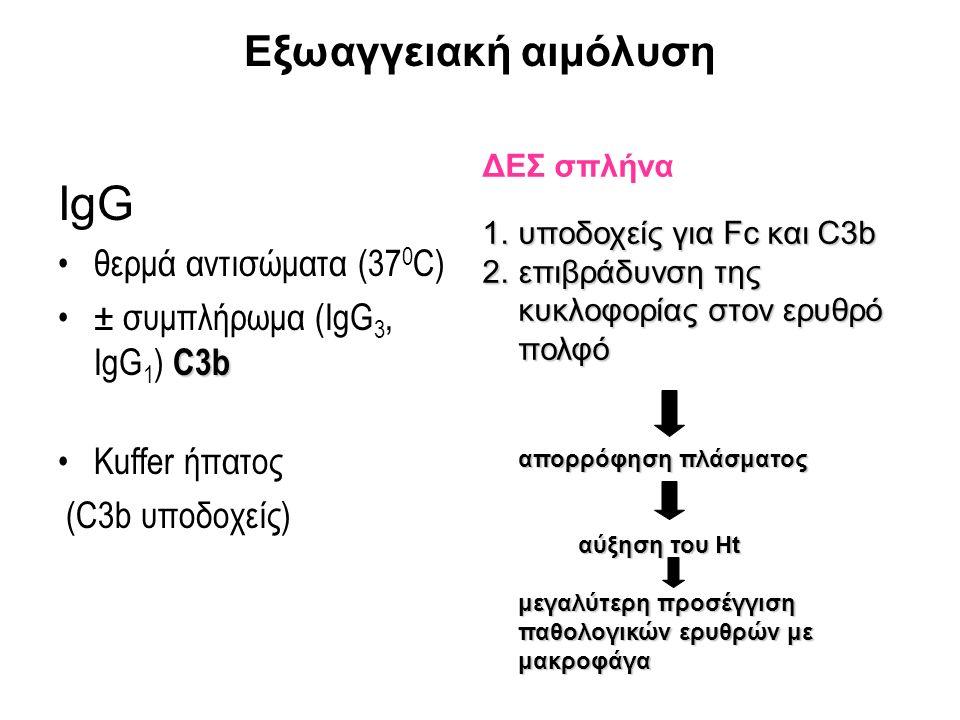 Eξωαγγειακή αιμόλυση ΙgG θερμά αντισώματα (37 0 C) C3b± συμπλήρωμα (IgG 3, IgG 1 ) C3b Κuffer ήπατος (C3b υποδοχείς) ΔΕΣ σπλήνα 1.υποδοχείς για Fc και C3b 2.επιβράδυνση της κυκλοφορίας στον ερυθρό πολφό απορρόφηση πλάσματος αύξηση του Ht μεγαλύτερη προσέγγιση παθολογικών ερυθρών με μακροφάγα