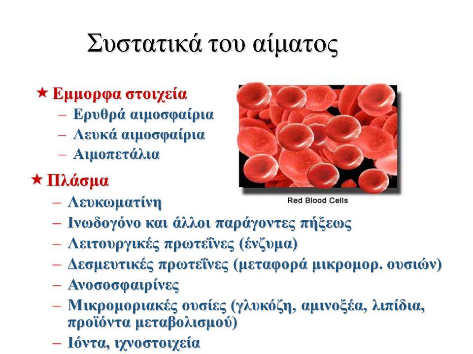 Συστατικά του αίματος  Εμμορφα στοιχεία –Ερυθρά αιμοσφαίρια –Λευκά αιμοσφαίρια –Αιμοπετάλια  Πλάσμα –Λευκωματίνη –Ινωδογόνο και άλλοι παράγοντες πήξεως –Λειτουργικές πρωτεΐνες (ένζυμα) –Δεσμευτικές πρωτεΐνες (μεταφορά μικρομορ.